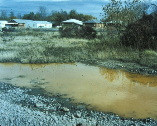 Love Canal Toxic Waste Seeps Up